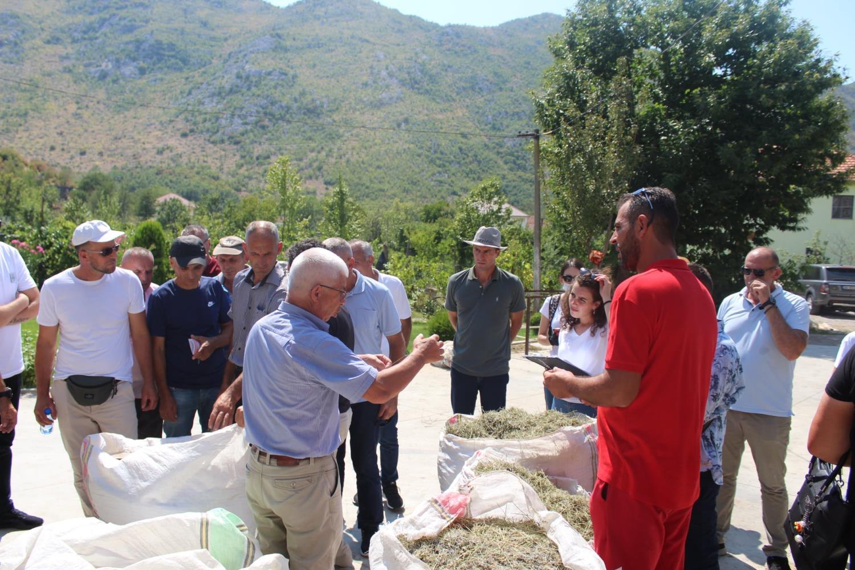 Realizohet vizita studimore në Shqipëri me përfituesit e BMA